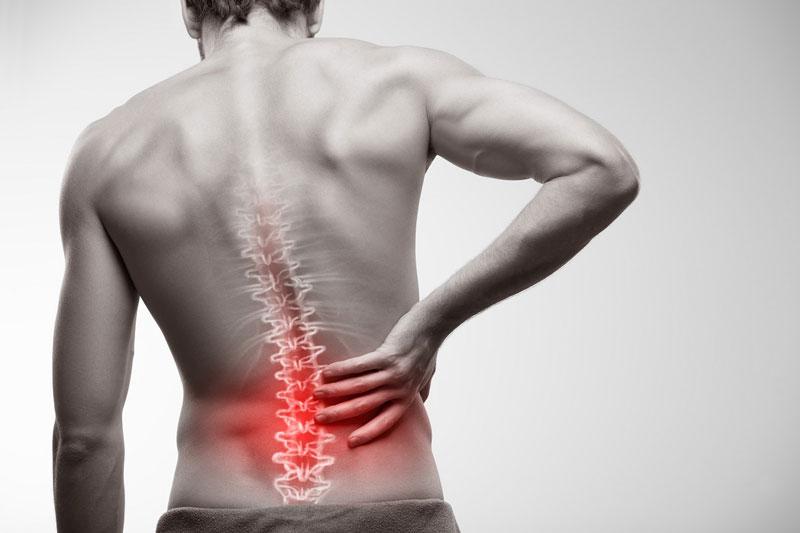 Sử dụng xe đẩy hàng giúp bạn phòng ngừa bệnh về xương khớp